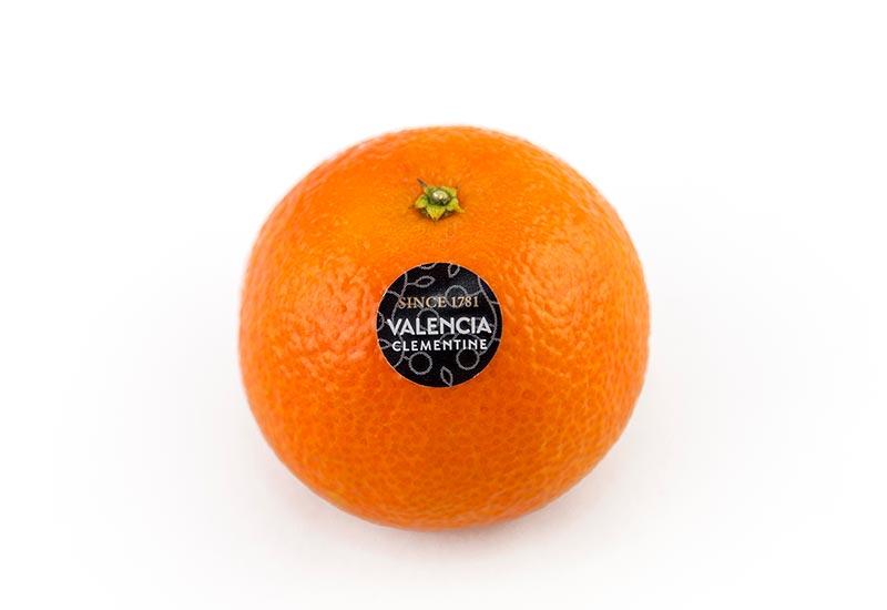 Valencia Mandarin from Valencia Clementine trade mark